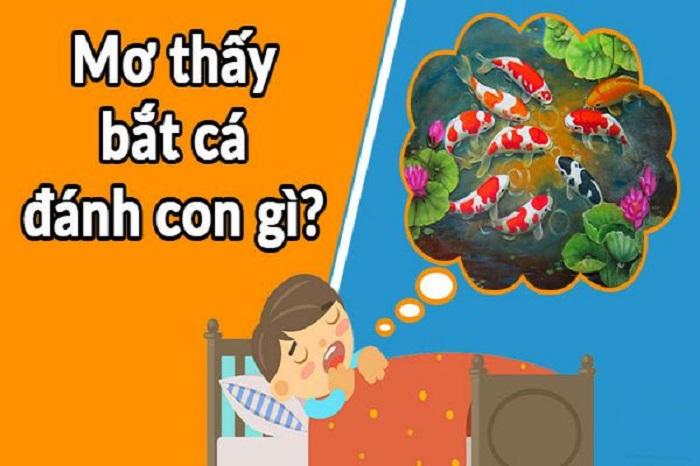 Mơ thấy bắt cá đánh con gì? Báo điềm báo gì?