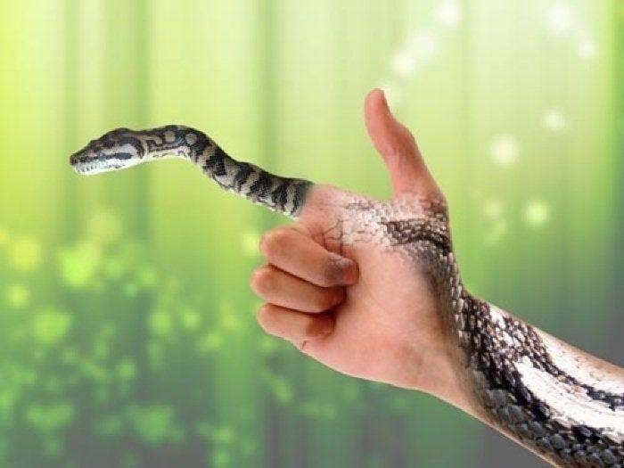 Nằm mơ thấy rắn cắn đánh con gì chính xác nhất? Tốt hay xấu?